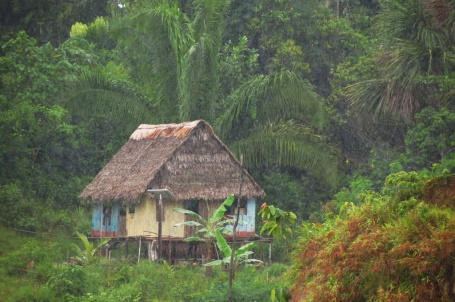 A lonely house, along the Napo. See the solar panel?