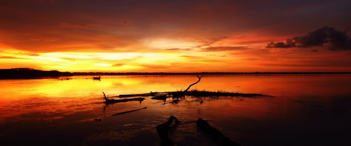 Those stunning Amazon sunset!