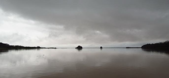 Some long grey days, creating a mystical scenery on the Amazon