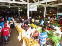 The market in Tefe