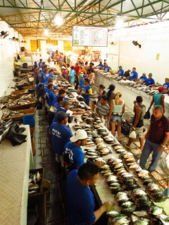 Fish market in Tefe
