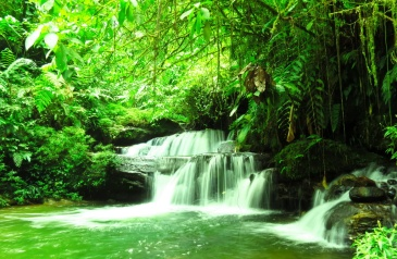Isolated, nearly unknown little jungle waterfall, 1 hour walking and 200m swimming into the jungle. Loved it!