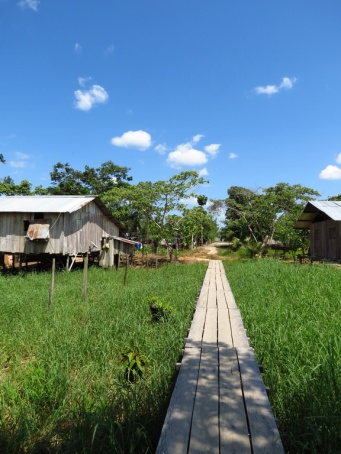 The boardwalks that connects the jungle-houses; it connects the community, even when the river occasionally floods.