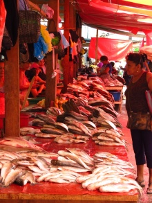 A fishy market in Iquitos
