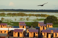New but small houses on the edge of town in Iquitos